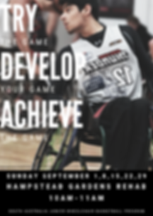 Try Develop Achieve.png