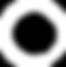 Cinvox Logo (White).png
