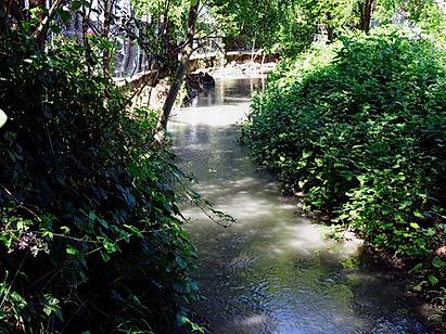 Bealera Putea-canale, presso Aeroclub di Torino, Collegno.