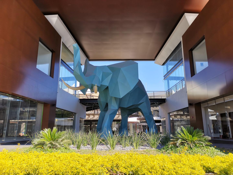 Elefante @ Animol