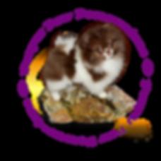 Sheri purple.png
