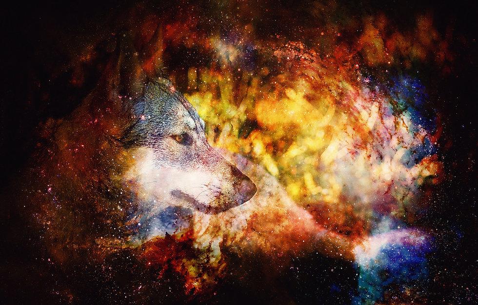 dreamstimemaximum_179103759.jpg