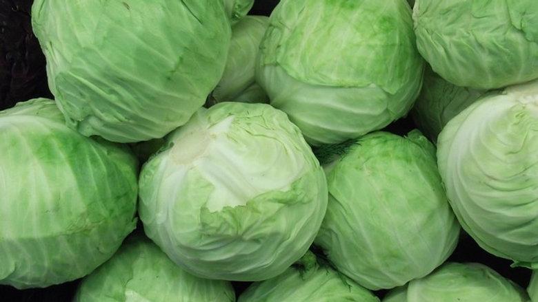 Chou vert lisse /kg