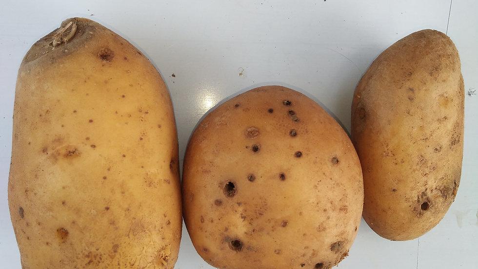 PDT Monalisa Déclassées promo 1kg