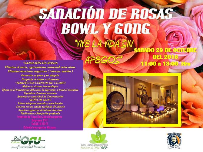SANACIÓN DE ROSAS BOWL Y GONG