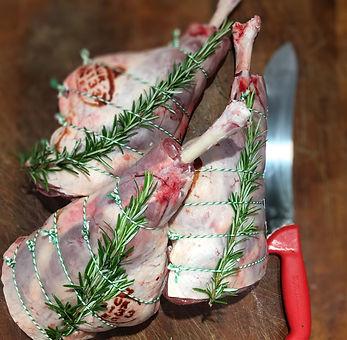 lamb new (2).jpg