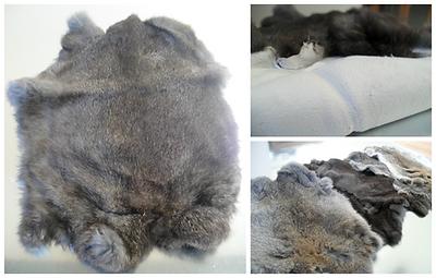 Wild Rabbit Skins