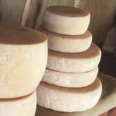 Сыр «Томм» коровий