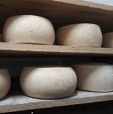 Сыр «Томм» козий