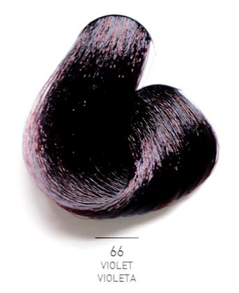 66 Violet - Violeta