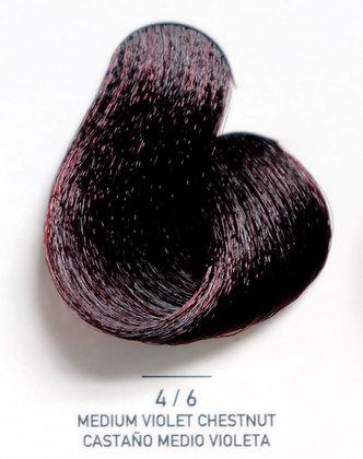 4 / 6 Medium Violet Shestnut - Castaño Medio Violeta
