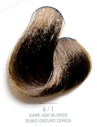 6 / 1 Dark Ash Blonde - Rubio Oscuro Ceniza