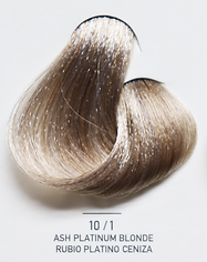 10_1 Ash Platinum Blonde.png