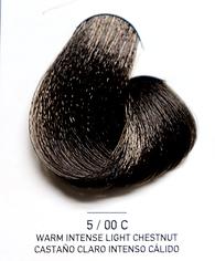 5_00 C Warm Intense Light Chestnut.png