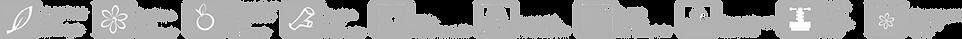 Logo Şeridi_1.png