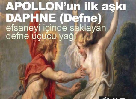 APOLLONUN İLK AŞKI DAPHNE (DEFNE)