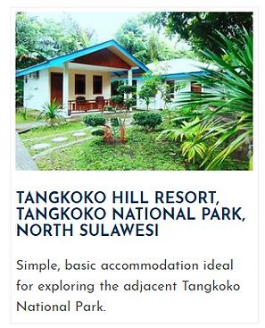 Sulawesihotel1.png