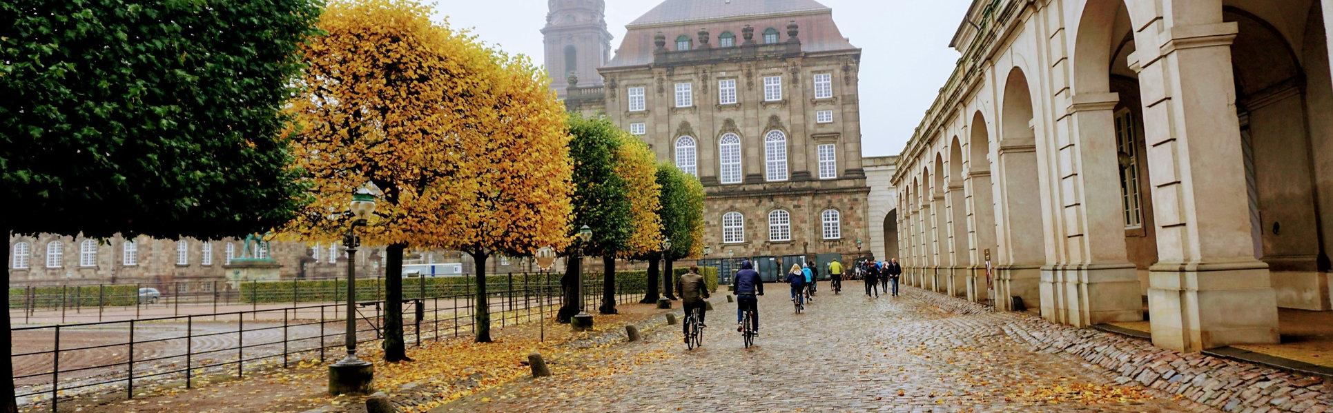 Antigo-konsulter cyklar tillsammans förbi höstgula träd.