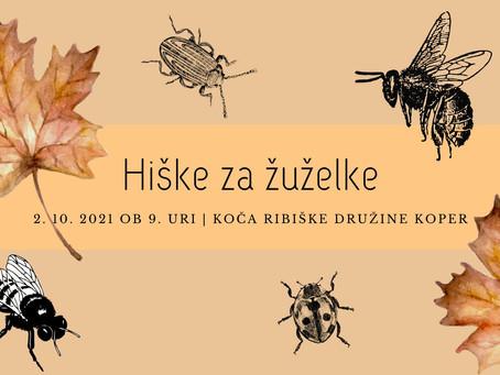 DELAVNICA: Naučimo se izdelati hiško za žuželke