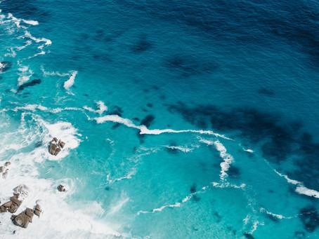 Dan oceanov 🌊🌊🌊