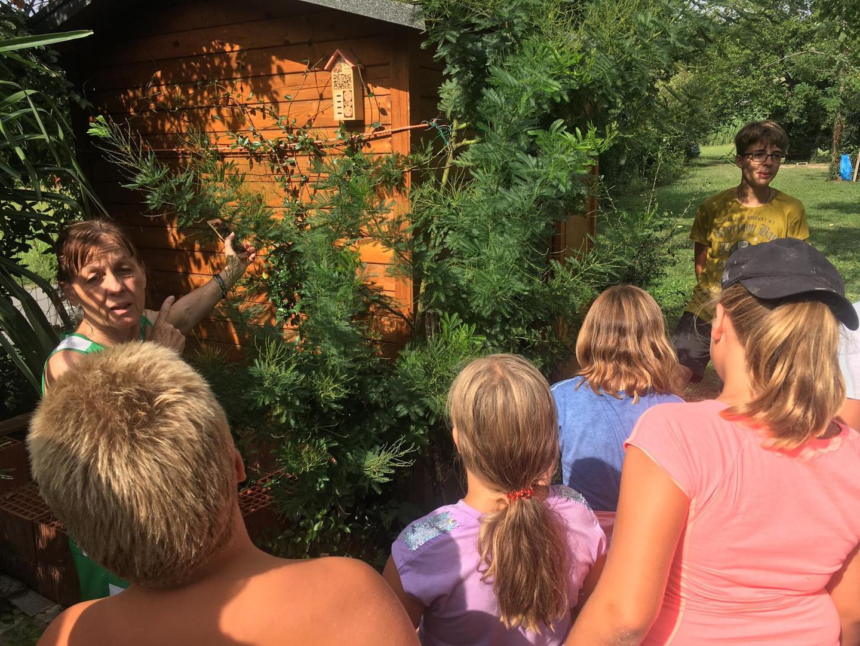 Zeleni kamp - 3.dan - O zeliščni kulturi...