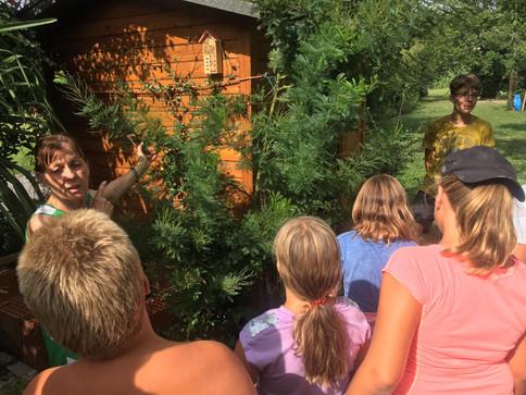 Zeleni kamp - 3.dan - O zeliščni kulturi
