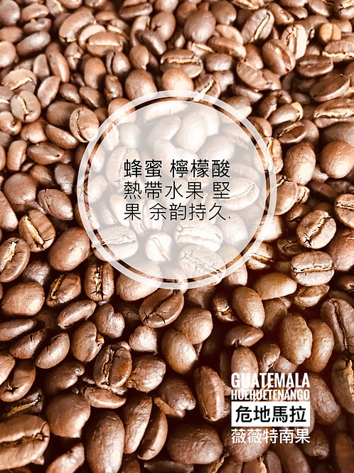 Guatemala Huehuetenango 危地馬拉 薇薇特南果 新鮮烘焙 咖啡豆 落單即烘 $63/100g, $93/200g