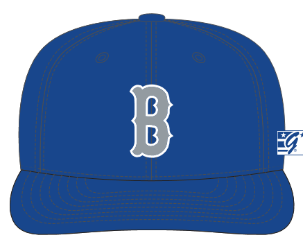 Blasters Team Hat