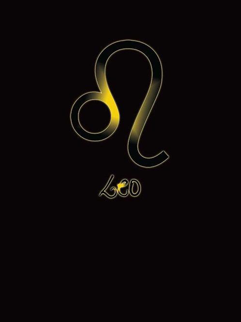 Zodiac Astrology Leo Symbol Shirt