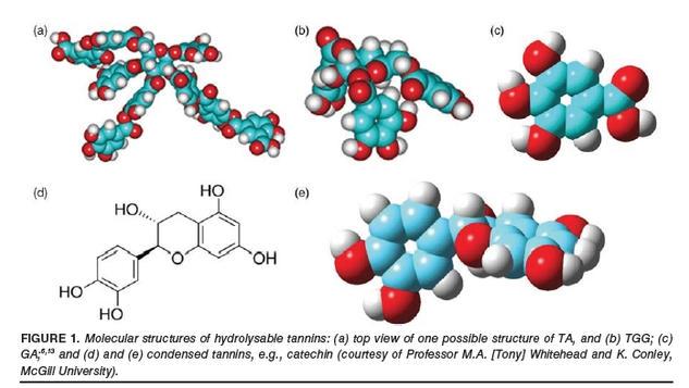 TGWT Tannin Molecule 3D