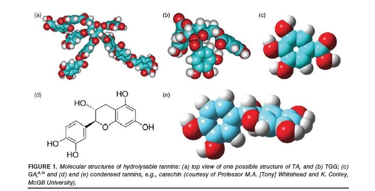 TGWT Tannins Molecules