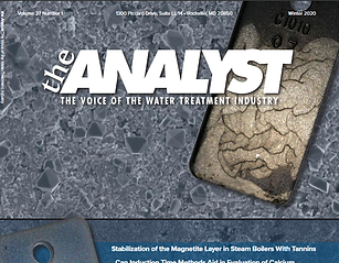 Page Couverture du magazine The Analyst publié par AWT TGWT