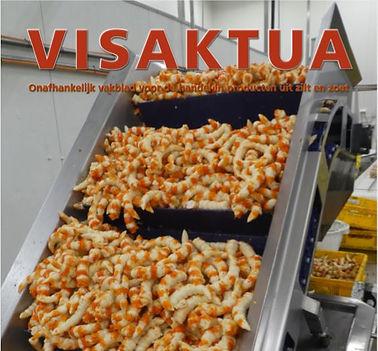 Cover Visaktua.JPG