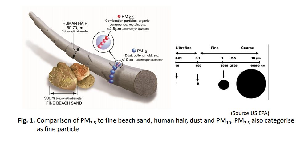 PM2.5 vs other fine substances