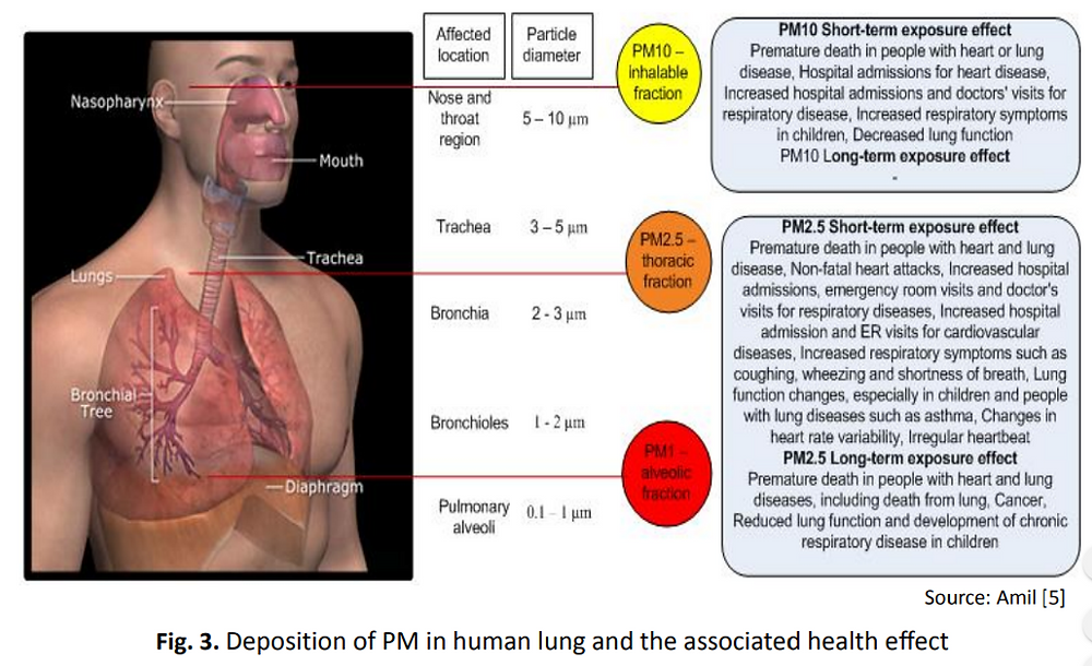 PM2.5 vs our airways and its effects