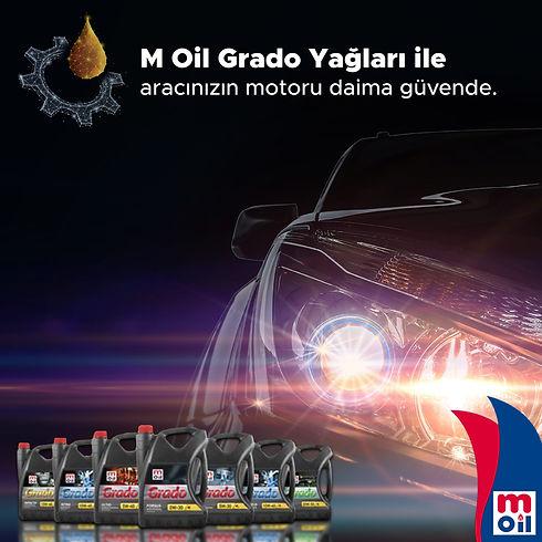 M Oil Grado.jpg