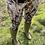 Thumbnail: Shadow Huntress Leggings (Matt Finish)