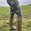 Thumbnail: Mad March Boxing Hares Leggings Olive Green (Satin Finish)