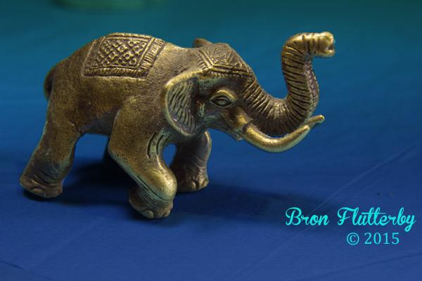 many elephants stand alone