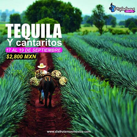 Tequila y Cantaritos.jpg