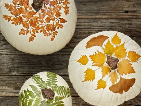 Leaves...Gorgeous DIY's For All Ages