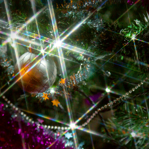 The Cherry Hinton Lights