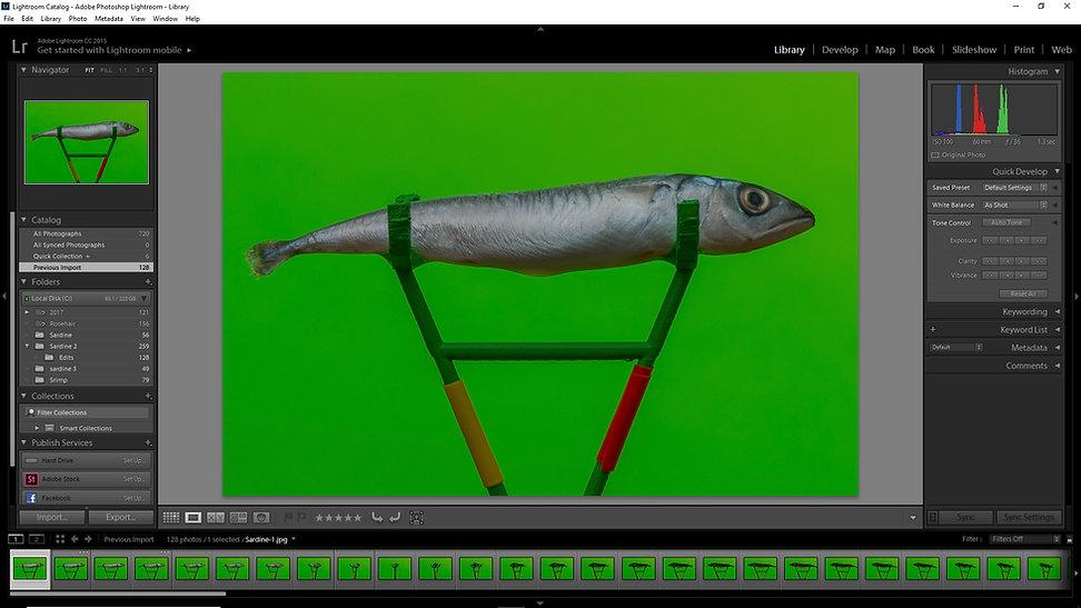 Photgrammetry, Art, photography, 3D