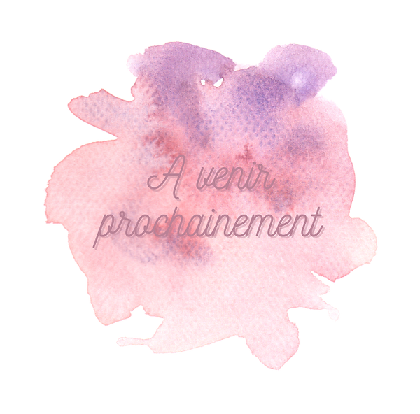 Prochainement Site Web 2.PNG