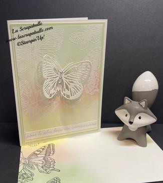 """Live de mardi dernier """"Papillons et Colorisation"""""""