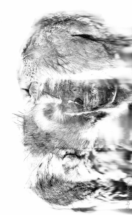 unfold-03.jpg