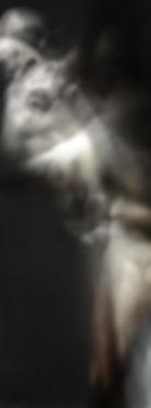 body, exploring, long exposure, naked, physical, Rotterdam, Paris, galerie, luxury, expensive art, flatland, Abbott, contemporary art, studio, photography, conceptual art, art fair, Brussels, experimental art, bert koeck, New York , art scene, gallery, moma, London, Barcelona, mixed media, imaging, contemporary artist, experimental art, pixel, interdimensional data, DIY, toolbuilder, converted devices, art exhibition, philosophy, experiment, think process, techniques, nude, invention, exposure, mulipleexploring anthropology, body spasms, distortions, inner struggle, exposure time, consuming spacial emotiveness, bert koeck