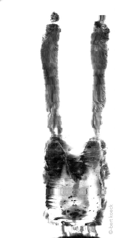 """""""between legs""""-01.jpg"""