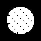 carbono_logo.png