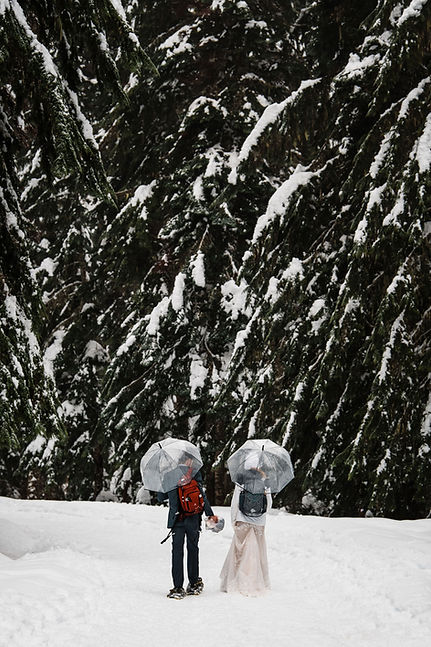 A couple snow shoeing amount giant, snow covered trees during their Washington adventure elopement